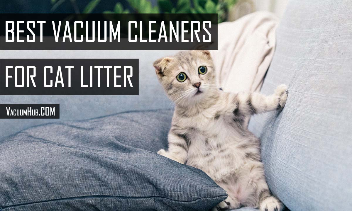 Best Vacuum For Cat Litter & Fur: Quick & Easy Cleaning