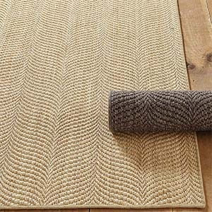 how to clean a sisal rug dog vomit